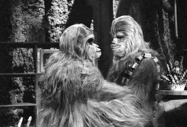 """Angeben, du kannst: Die irrsten Fakten zu """"Star Wars"""""""
