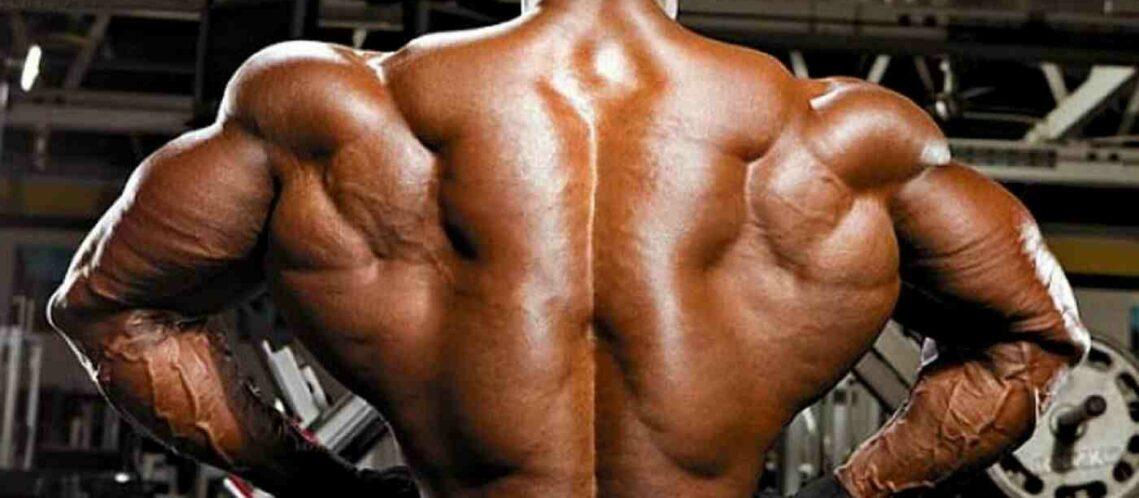 Einen breiteren Rücken bekommen