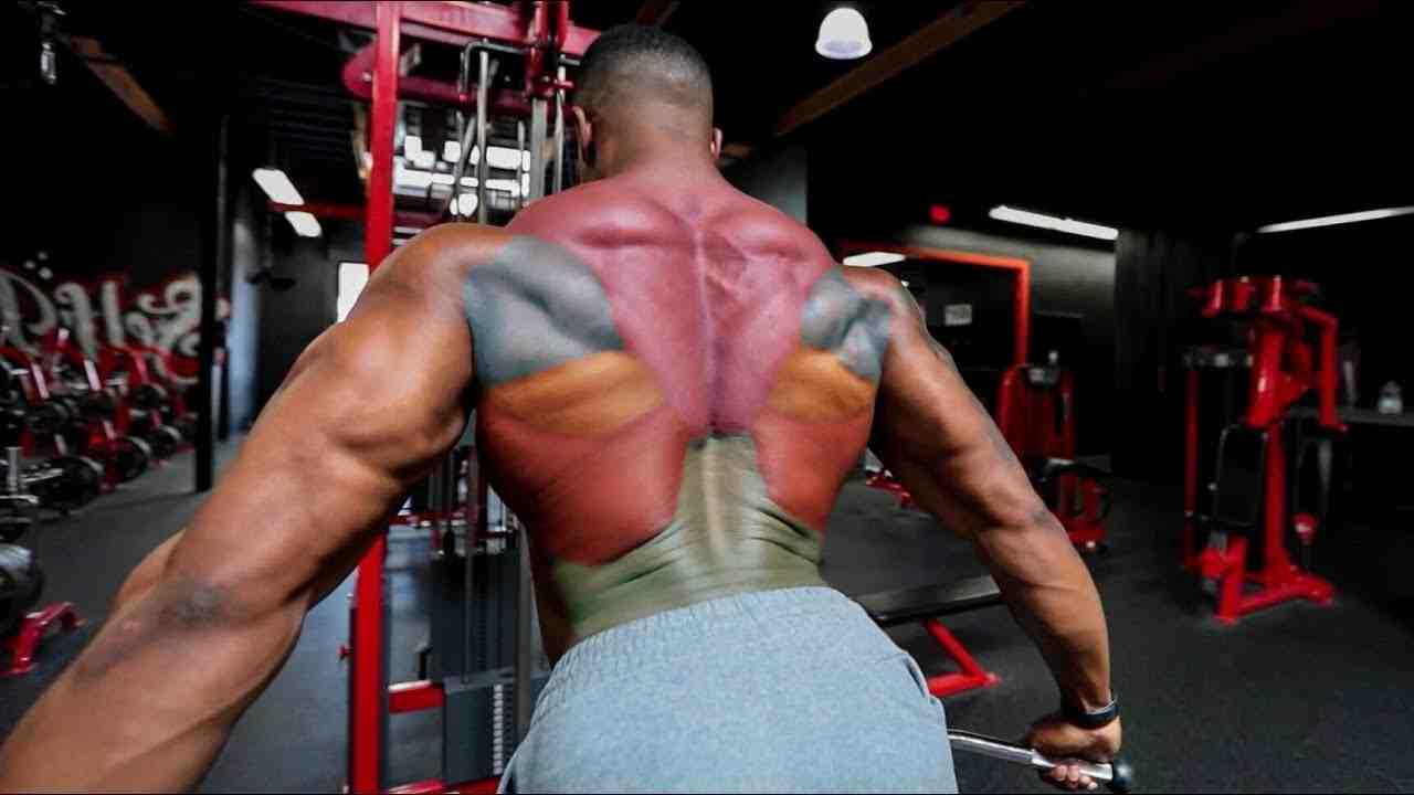 Wie trainiert man den mittleren Rücken?