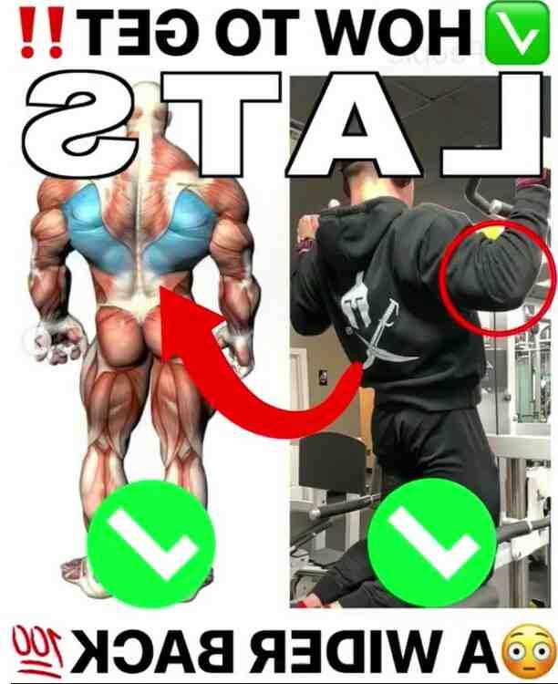 Wo liegt der große Rückenmuskel?